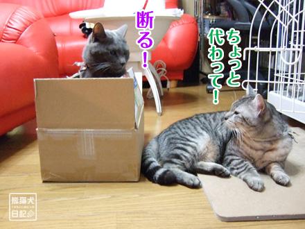 箱◇戦争 ④