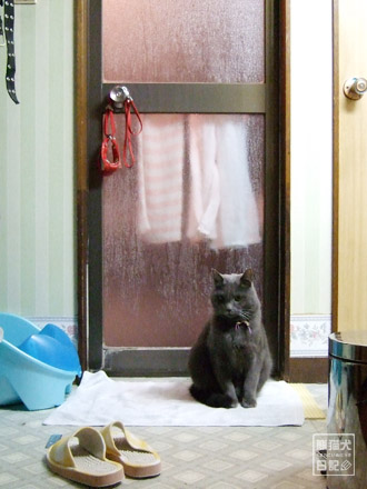 お風呂の前で待ち続ける・・・
