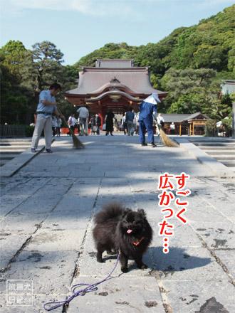 鶴岡八幡宮を一周した