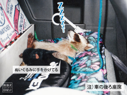 後部座席で熟睡
