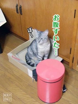 お気に入りの箱・・・⑤