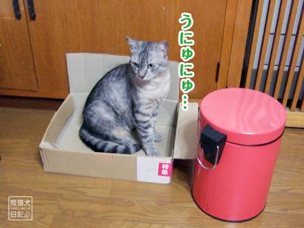 お気に入りの箱・・・④