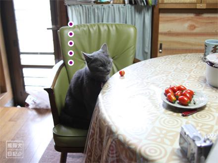 プチトマト・・・