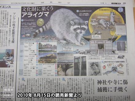 アライグマ被害を伝える新聞記事・・・