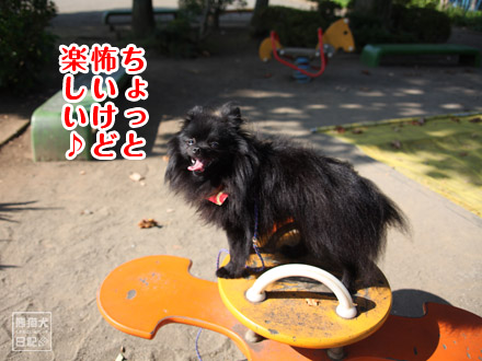 公園の遊具③