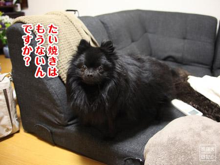 20110221_新潟にて2