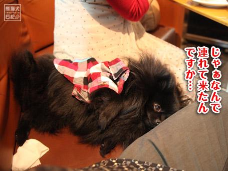 20110404_下北沢6