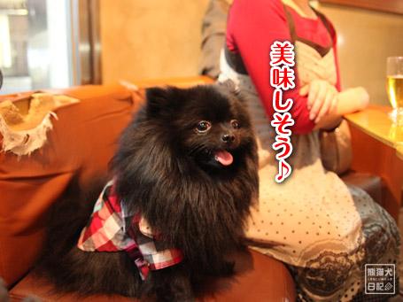 20110404_下北沢4