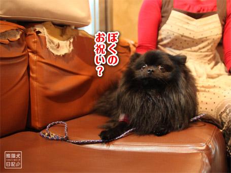20110404_下北沢2