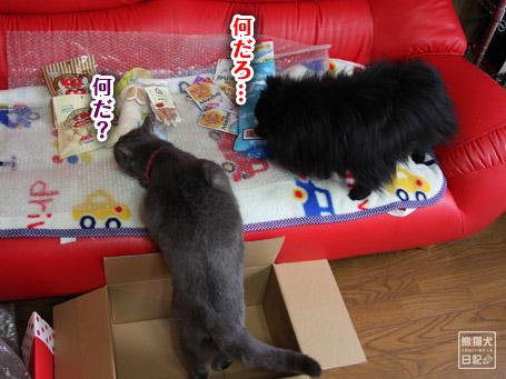 20110405_誕生日プレゼント2