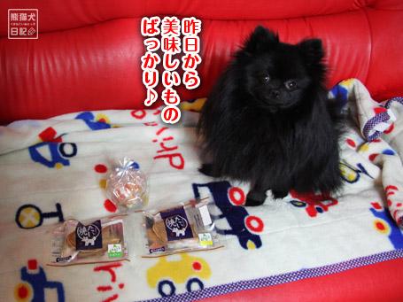 20110406_真熊のプレゼント10