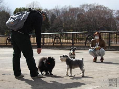 20110403_いろんな犬9