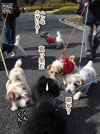 20110417_昭和記念公園8