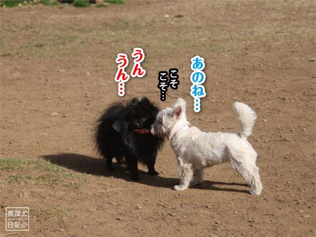 20110410_伝言ゲーム6