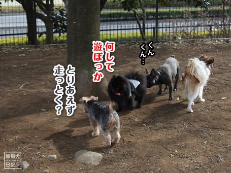 20110410_伝言ゲーム5