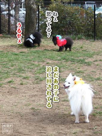 20110410_伝言ゲーム3