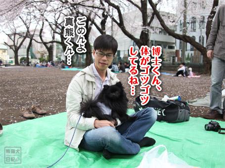 20110411_お花見8