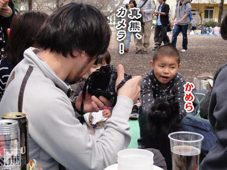 20110411_お花見10