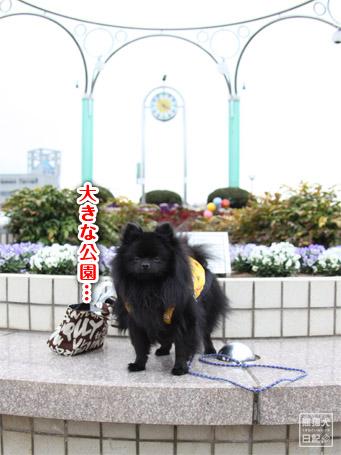 20110422_大きな公園1