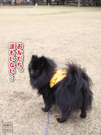20110422_大きな公園7