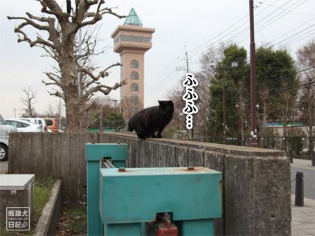 20110424_階段ダッシュ7