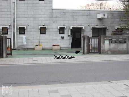 20110424_階段ダッシュ8