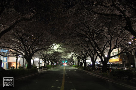 20110424_階段ダッシュ9