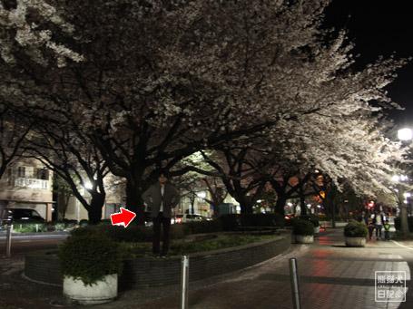 20110424_階段ダッシュ11