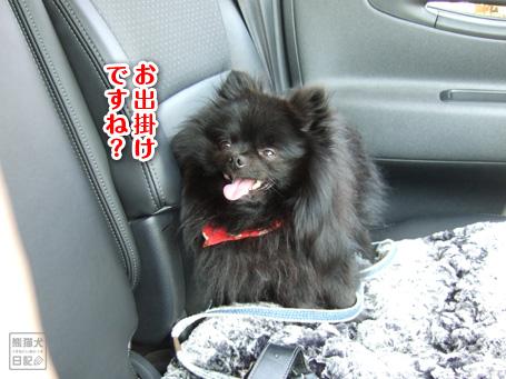 20110428_笑顔尽くし1