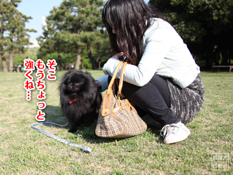 20110501_ヤッスク7
