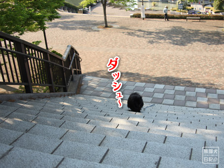 20110502_満足の帰宅4