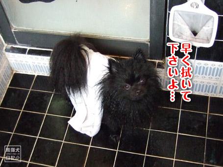20110504_お風呂6