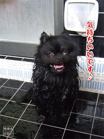 20110504_お風呂2