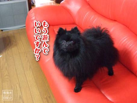 20110504_お風呂10