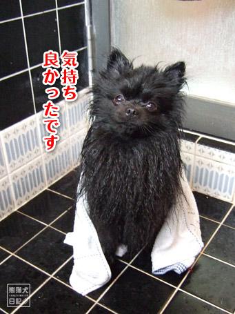 20110504_お風呂7