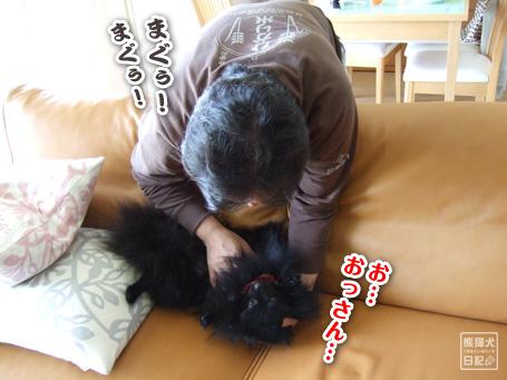 20110509_カディ邸ツアー4