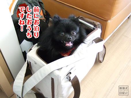 20110509_カディ邸ツアー2
