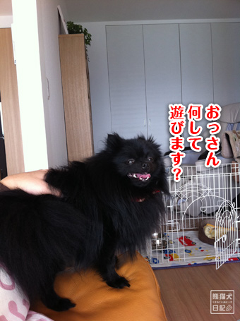 20110509_カディ邸ツアー7