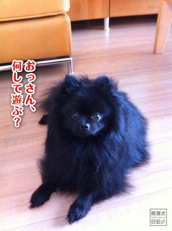 20110511_韓国へ7
