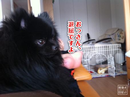 20110511_韓国へ13