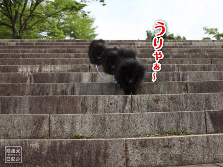 20110518_階段下りダッシュ6