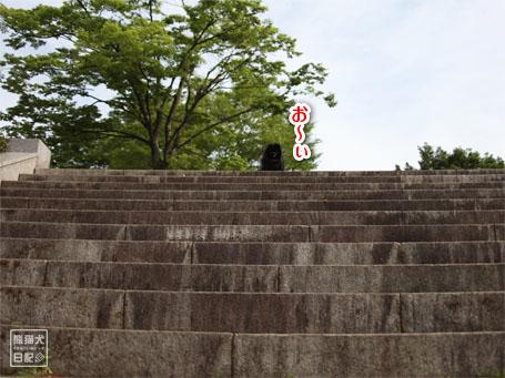 20110518_階段下りダッシュ5