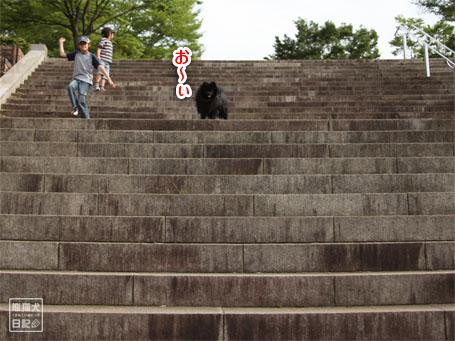 20110518_階段下りダッシュ7