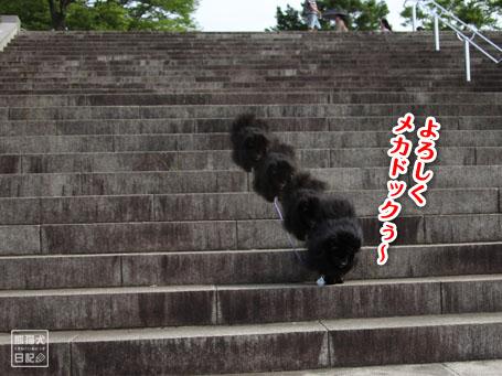 20110518_階段下りダッシュ8