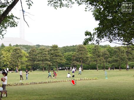 20110520_撮影風景1