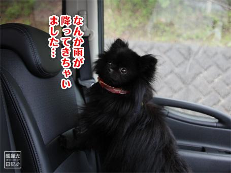 20110523_宮ヶ瀬2