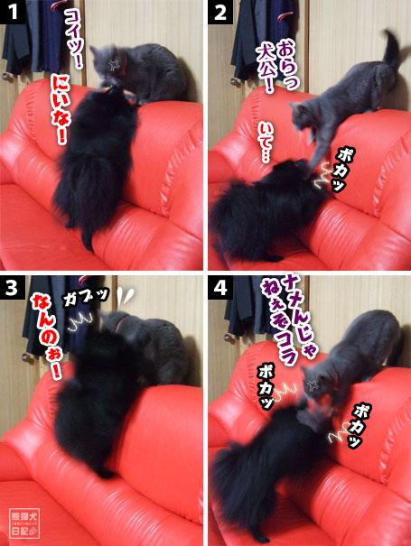 20110526_小競り合い4