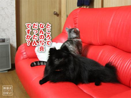 20110527_正面撮り8