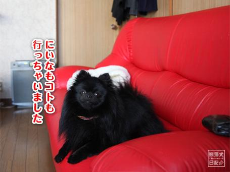 20110528_青春ドラマ風5