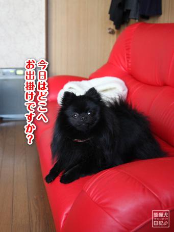 20110528_青春ドラマ風6